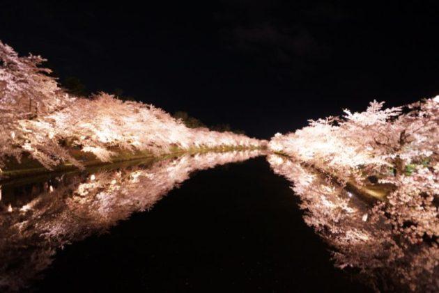 弘前さくらまつり2019桜のトンネル