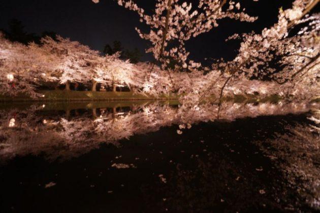 弘前さくらまつり2019の鏡桜