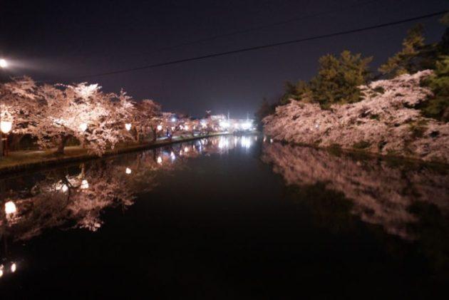 弘前さくらまつり2019桜のトンネル外から