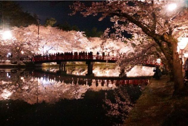 弘前さくらまつり2019春陽橋から