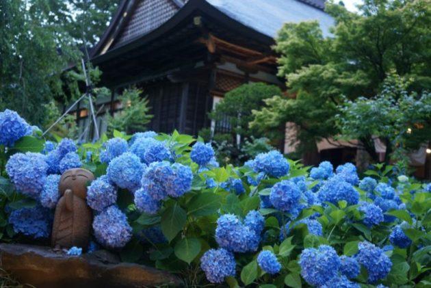 北浦雲昌寺の本堂とお地蔵さん