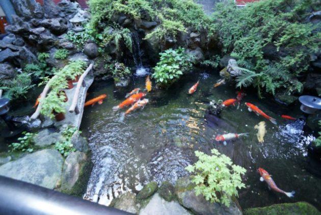 行天宮の中庭に小さい池がありました