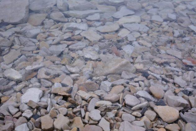 浄土ヶ浜の海水の境目が分からないくらい綺麗