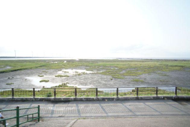 高美湿地の入り口まで歩いて行きます