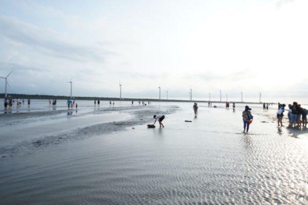 高美湿地干潮時ならばこんな風に干潟に降りて歩いていけます