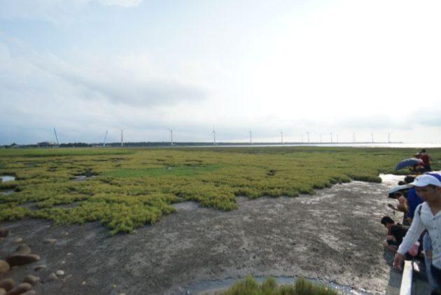 高美湿地奥の方に風力発電の風車が見えます