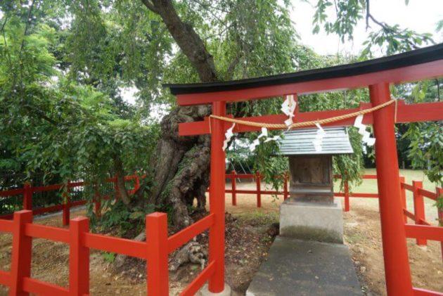 弘前天満宮の末社若木神社